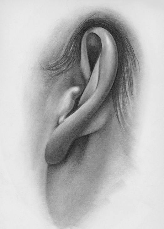 Inspiration Ear Pencil Drawing Step by Step Draw Facial Features With This In-Depth Beginner's Guide | Faces Photo