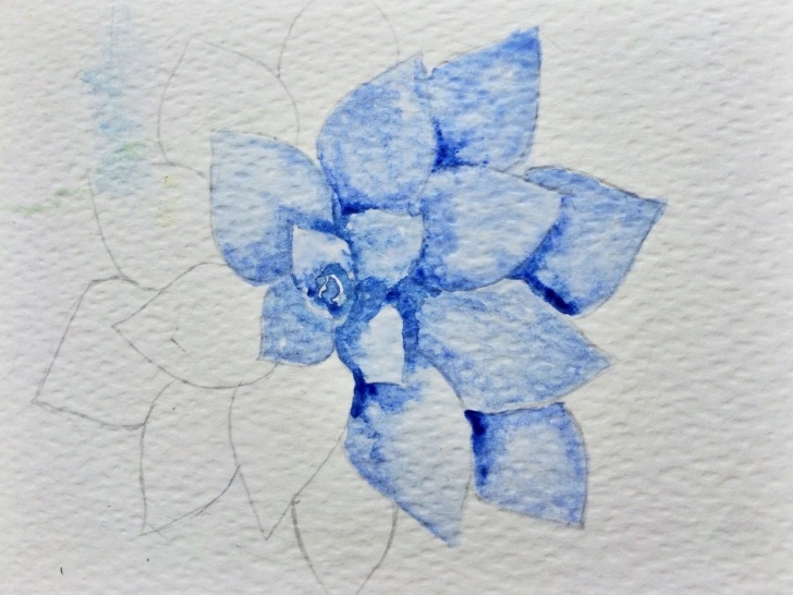 Inspiration Easy Watercolor Pencil Drawings Step by Step Watercolor Succulent Tutorial - Part 1 - Life-Athon   Painting Pics