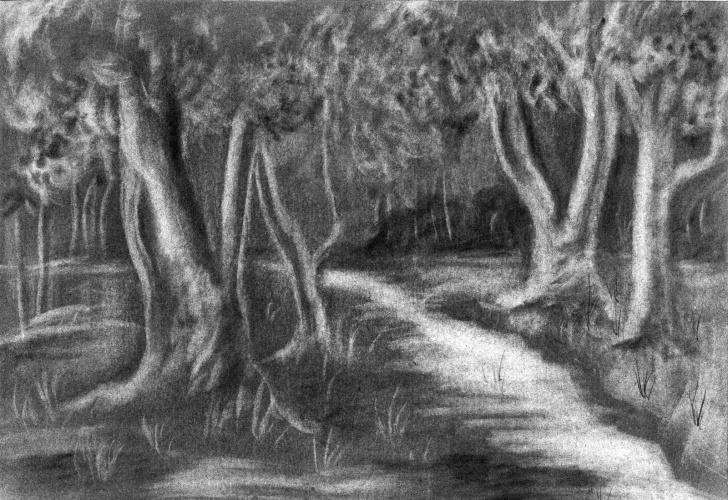 Inspiration Forest Pencil Drawing for Beginners Forest Pencil Sketch And Pencil Sketch Of Forest Pencil Sketch Of Photos