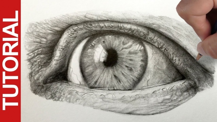 Inspiration Graphite Sketching For Beginners for Beginners How To Draw A Realistic Eye - Graphite Pencil Tutorial Image