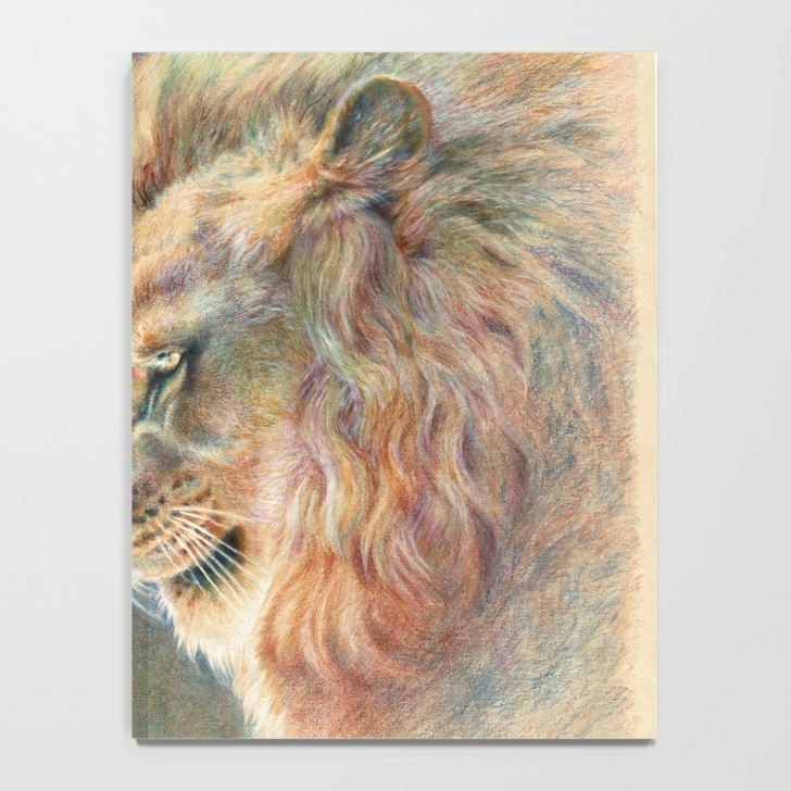 Inspiration Lion Colored Pencil Drawing Free African Lion Colored Pencil Drawing Notebook Images
