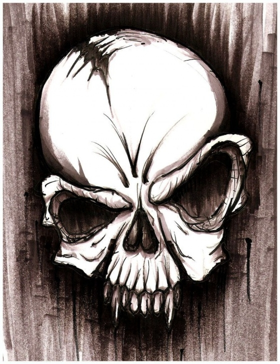 Pencil Drawings Skulls