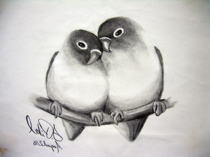Inspiration Pencil Shading Animals for Beginners Pencil Shading Sketches At Paintingvalley | Explore Collection Pictures