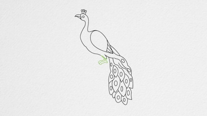 Inspiration Simple Pencil Sketch Of Peacock Lessons Free Peacock Drawing, Download Free Clip Art, Free Clip Art On Pic