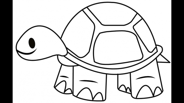 Inspiration Tortoise Pencil Drawing Courses How To Draw A Tortoise - Easy And Simple Steps Image