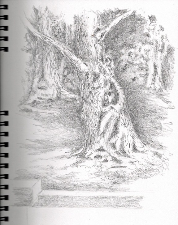 Inspiration Tree Pencil Shading for Beginners Pencil Shading | Graphic Anthropology Image