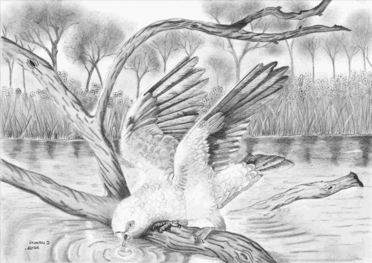 Inspiration Waterfall Pencil Drawing for Beginners Waterfall Pencil Drawings Of Nature Pics