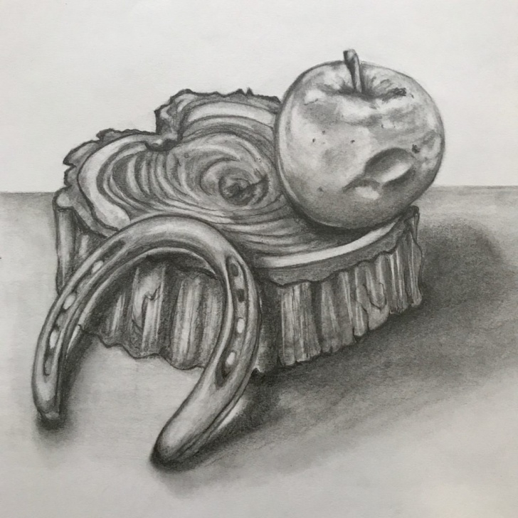 Inspiring Graphite Still Life Ideas Phoebe Lovins Still Life - Graphite - Lutheran High - A Private Pic