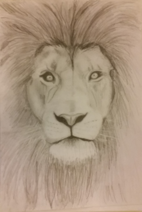 Inspiring Lion Pencil Drawing for Beginners Simple Lion Sketch/drawing With Pencil | Maggie Drawing Ideas In Photo
