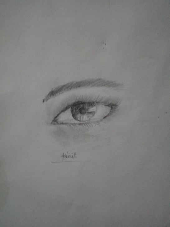 Inspiring Normal Pencil Sketch Tutorials How To Draw A Realistic Eye Using A Normal Pencil — Steemit Photo