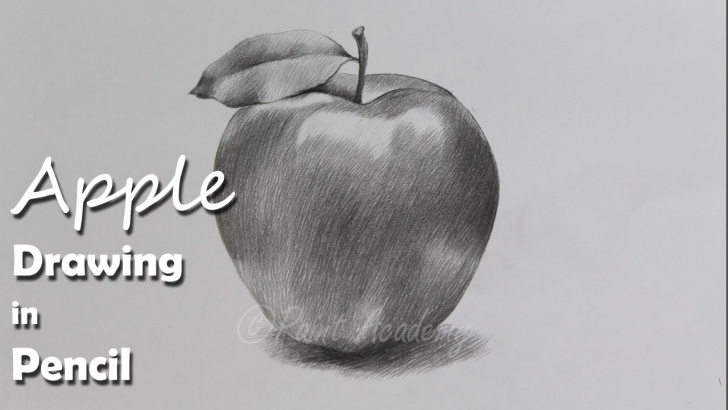Inspiring Pencil Sketch Of Apple for Beginners How To Draw An Apple In Pencil | Step By Step How To Use Pencil Strokes Picture