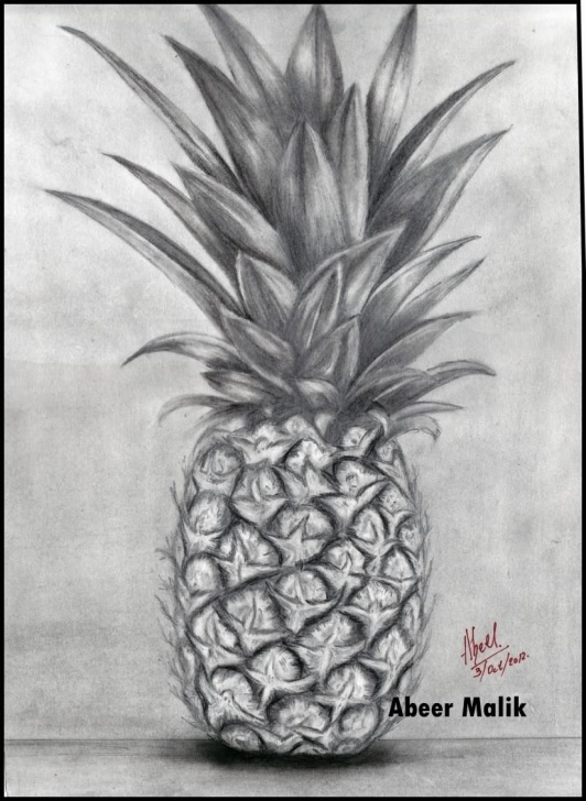 Inspiring Pineapple Pencil Drawing for Beginners Pineapple Pencil Sketch - Sketching By Abeer's Art Work In Sketching Photo