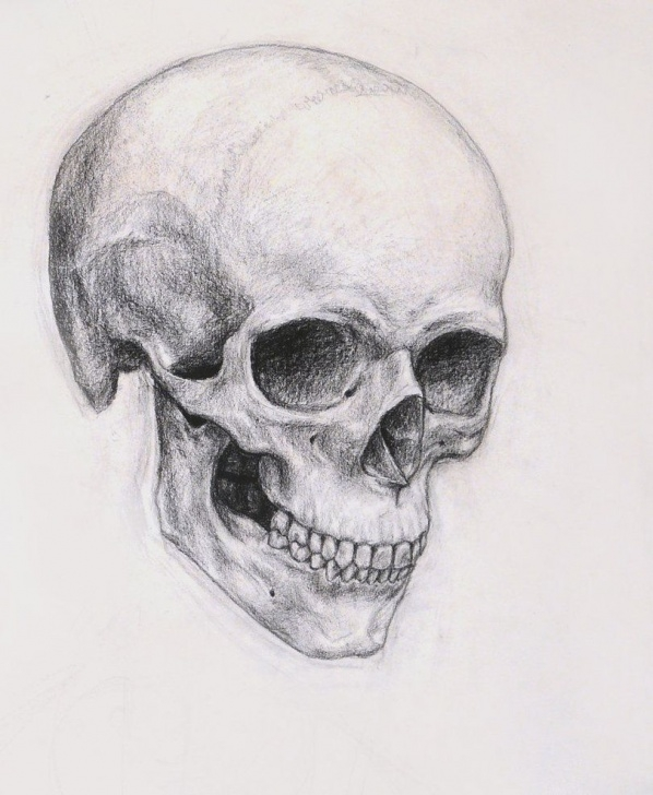 Inspiring Skull Pencil Drawings Easy Skull By ~Nachiii On Deviantart | Art | Skull Sketch, Pencil Photos