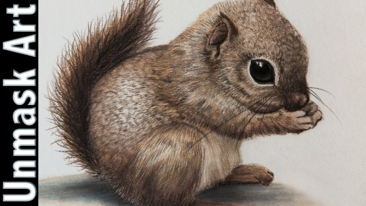 Inspiring Squirrel Pencil Sketch Tutorial Baby Squirrel | Colored Pencil Drawing Time Lapse Image