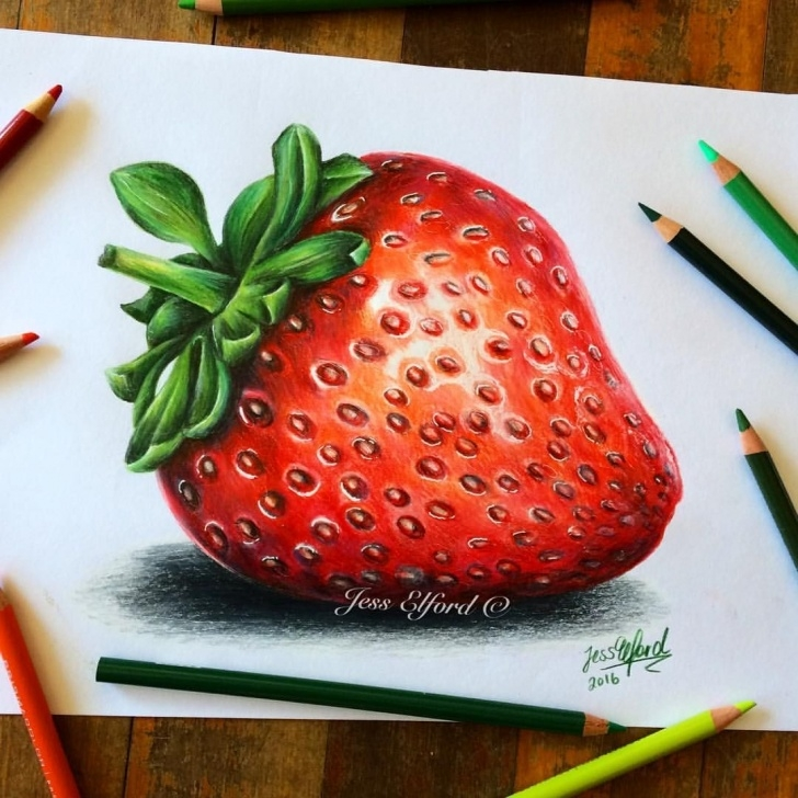 Inspiring Strawberry Pencil Drawing Easy Realistic Strawberry Drawing By Jess Elford. Drawn With Prismacolor Images