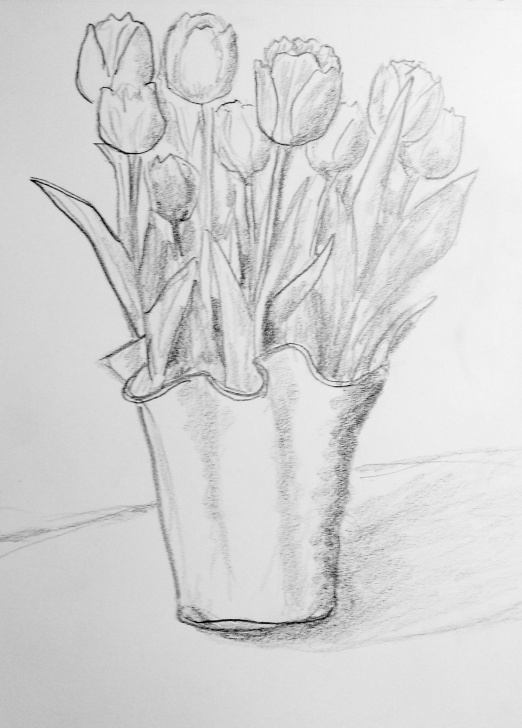 Inspiring Tulip Drawings In Pencil Lessons Tulips #drawing #pencil | Tulip Drawing In 2019 | Pencil Drawings Of Pictures