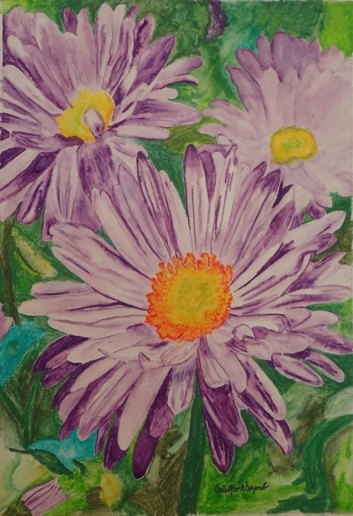 Inspiring Watercolor Pencils On Canvas for Beginners Purple Asters - Watercolor Pencils On Canvas, In Watercolor Pics