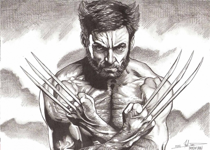 Wolverine Pencil Drawing