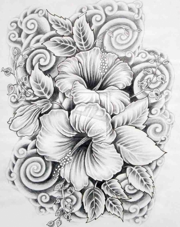 Interesting Beautiful Sketches Of Flowers Techniques Beautiful Paintings Search Result At Paintingvalley Pictures