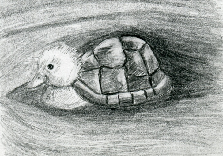 Interesting Black And White Pencil Drawings Tutorials Turtle Duck Pencil Drawing Black And White Print - Hybrid Animals Series Photo