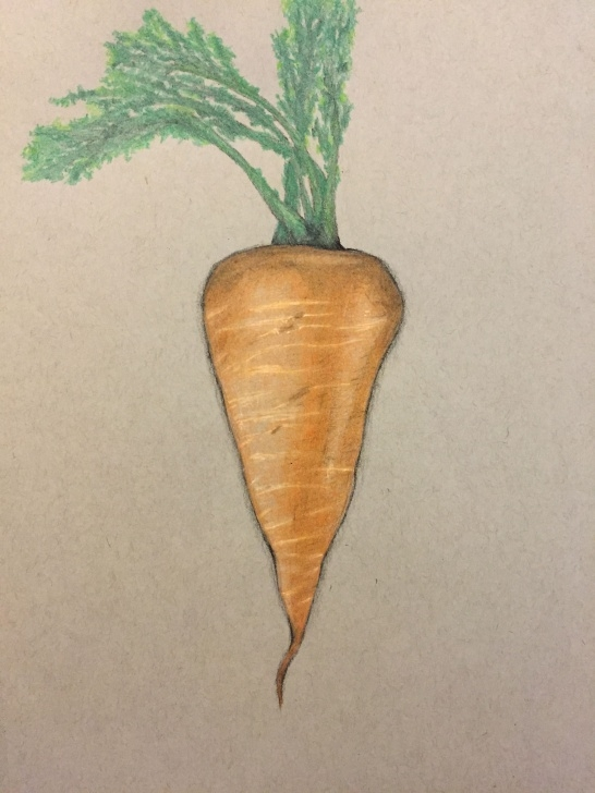 "Interesting Carrot Pencil Drawing Tutorial Carrot"" Colored Pencil Drawing | Drawings | Pencil Drawings, Colored Pics"