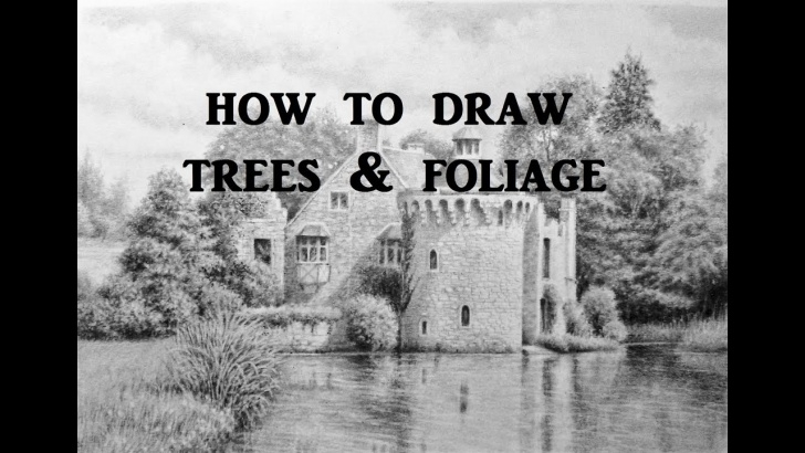 Interesting Graphite Landscape Drawings Tutorial How To Draw Landscapes, Trees, Foliage, Graphite Pencil Drawing Tips Pictures