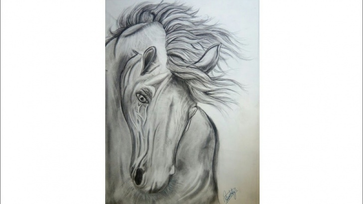 Interesting Horse Pencil Shading Ideas How To Draw A Realistic Horse /pencil Shading /priyanka Dream Arts Photos