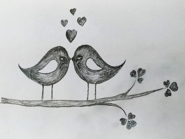 Interesting Love Birds Pencil Drawing Techniques Love Birds Art By Mlspcart On Dribbble Image