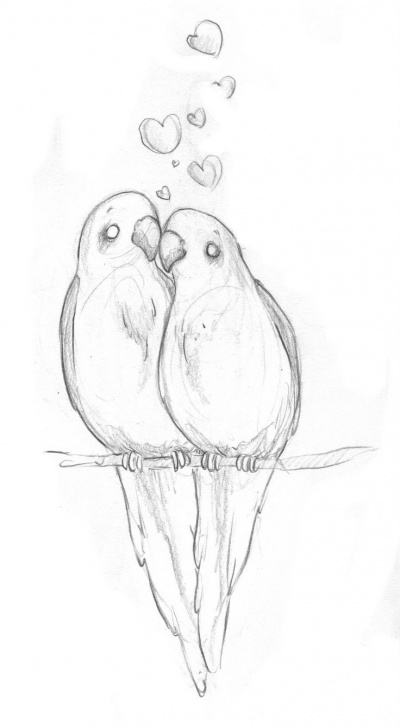 Interesting Love Birds Sketch Courses Love Birds! | Cool Art! In 2019 | Beautiful Pencil Drawings, Easy Photo