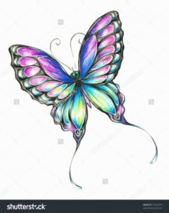 Interesting Pencil Drawings Of Flowers And Butterflies With Colours Step by Step Pencil Drawings Of Flowers And Butterflies With Colours | (Jens Image