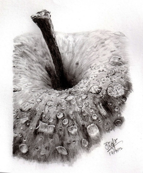 Interesting Pencil Sketch Of Apple Lessons Pencil Sketch Of An Apple By ~Chaseroflight On Deviantart | Pencil Pictures