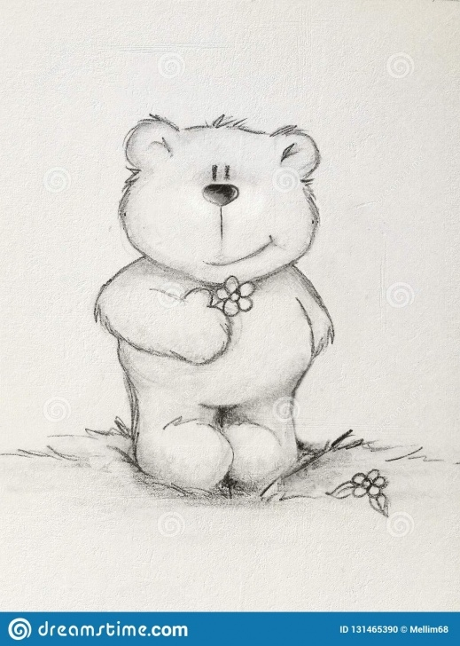 Interesting Teddy Bear Pencil Sketch Tutorial Hand Drawn Teddy Bear Holding Flower , Textured Background Stock Pic