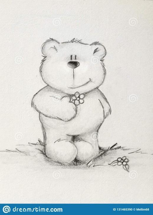 Interesting Teddy Bear Pencil Sketch Tutorial Hand Drawn Teddy Bear Holding Flower , Textured Background Stock Pic