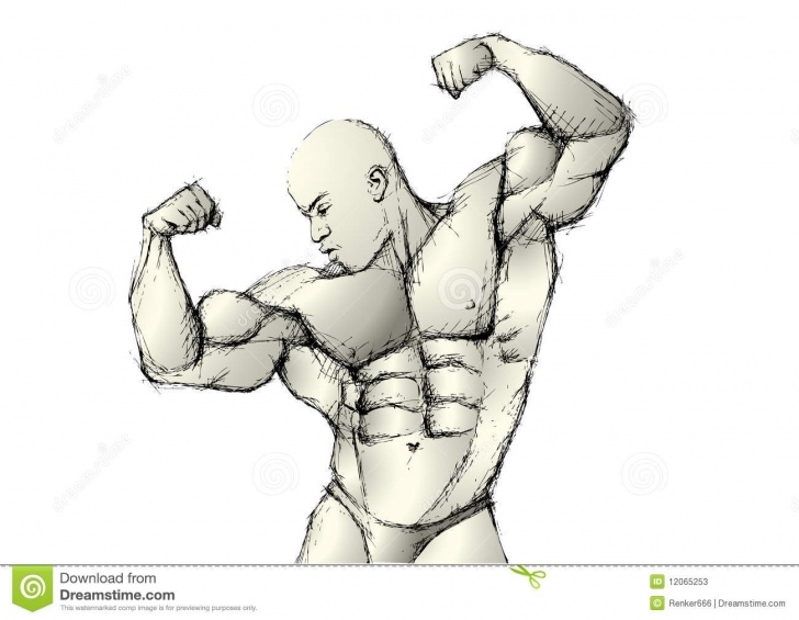 Bodybuilder Pencil Sketch
