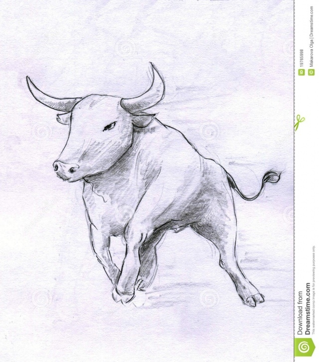 Learn Bull Pencil Drawing Ideas Running Bull Stock Illustration. Illustration Of Drawings - 19765998 Image