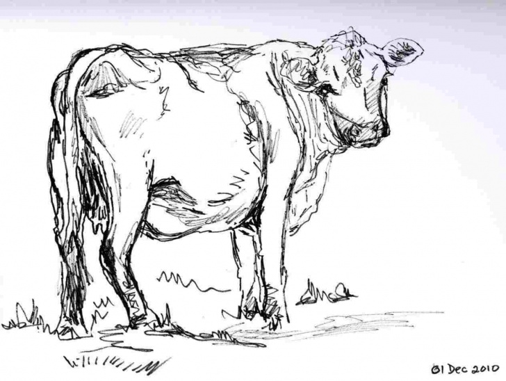 Learn Cow And Calf Pencil Drawing Techniques Love-Cow-And-Calf-Pencil-Drawing-You-Like-A-S-In-Pinterest-Sketch Picture