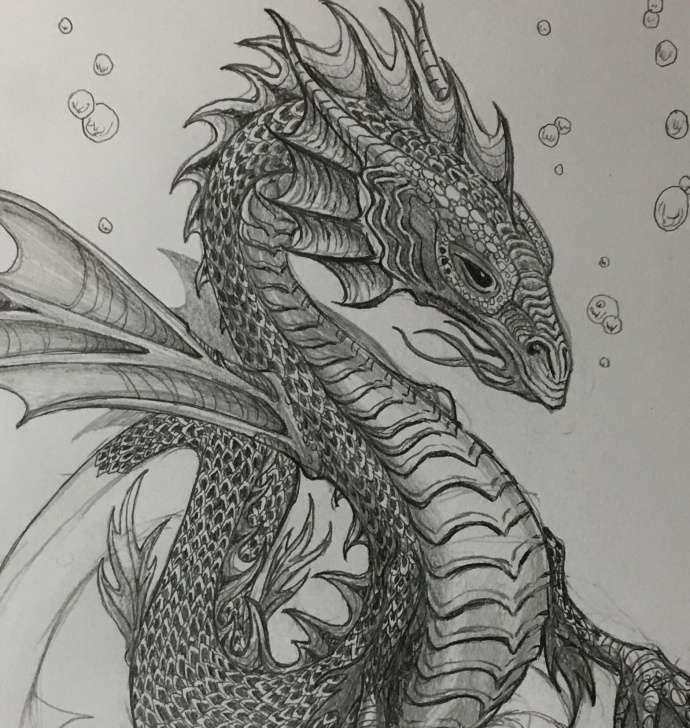 Learn Dragon Pencil Drawing for Beginners Work In Progress. Pencil Drawing, Water Dragon : Dragons Pictures