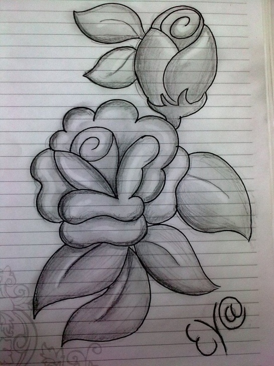 Easy Flower Drawings In Pencil