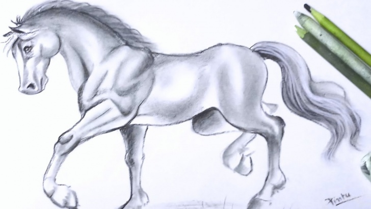 Learn Horse Pencil Shading Lessons How To Draw A Horse Step By Step | Pencil Shading Drawing - Youtube Images