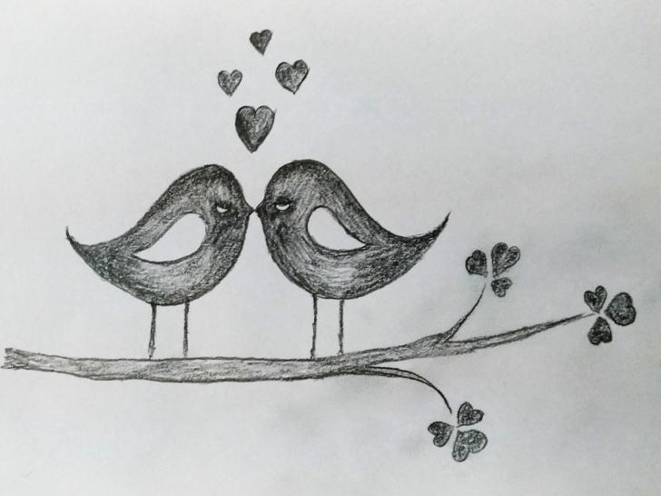 Learn Love Art Sketch Tutorial Love Birds Art By Mlspcart On Dribbble Images