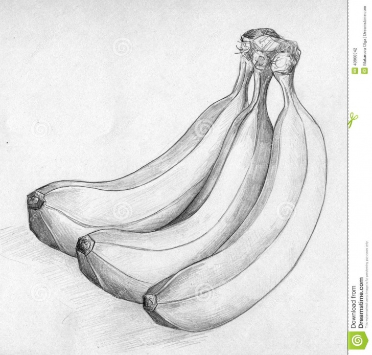 Learning Banana Pencil Drawing Techniques Banana Sketch Stock Illustration - Image: 40968342 | Skech Drawings Pictures