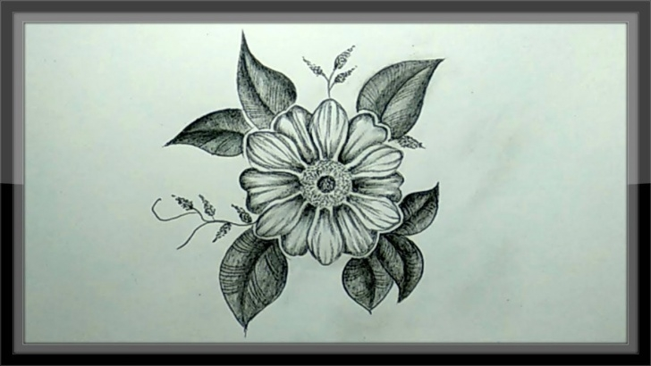 Learning Beautiful Sketches Of Flowers Courses Pencil Drawing - How To Draw A Beautiful Flower Easy Photo