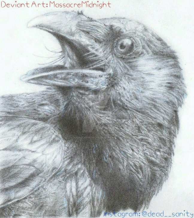 Learning Crow Pencil Drawing Step by Step Crow Pencil Drawing By Massacremidnight On Deviantart Pics
