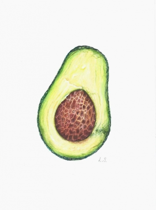 Learning Drawing Fruit With Colored Pencils Courses Avocado Colored Pencils Drawing Original Painting Fruit Art Kitchen Wall  Decor Food Illustration Artwork Photos