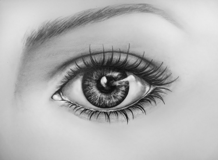 Learning Eye Painting Pencil Techniques for Beginners Hyper Realistic Eye Drawing At Paintingvalley   Explore Image