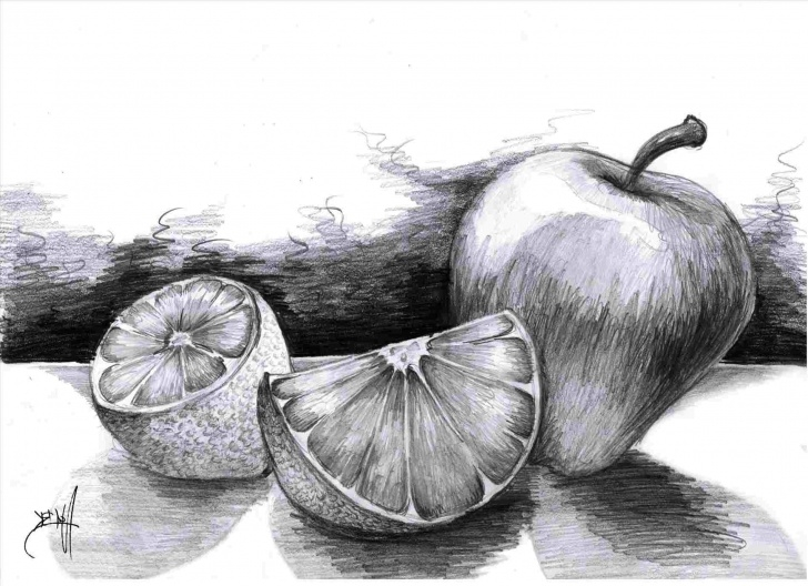 Learning Fruits Pencil Shading Simple Still Life Drawings In Pencil | Drawing Work Image