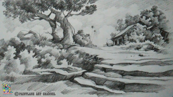 Learning Pencil Shading Drawings Scenery Step by Step How To Draw And Shade A Scenery For Learners / Beginners | Scenery Drawing  | Pencil Art Pics