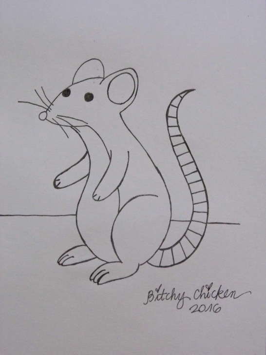 Learning Rat Pencil Drawing Tutorials How To Easy Pencil Drawing, Sketching Like A Pro! (Even If You're A Pics