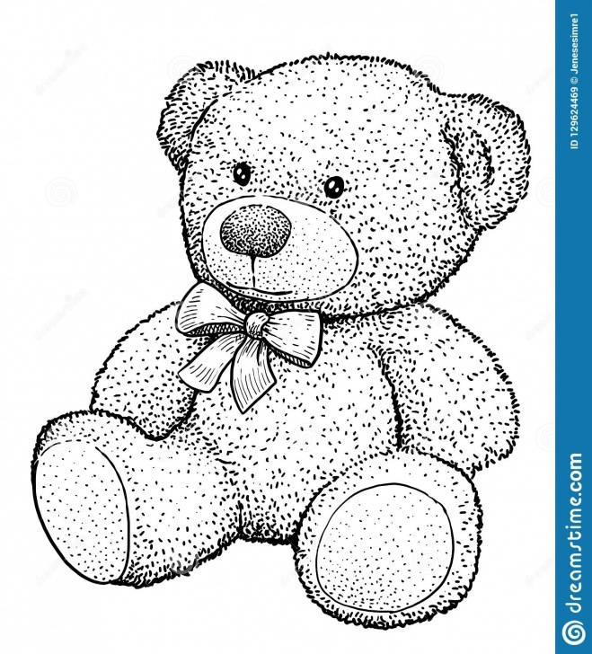 Learning Teddy Bear Pencil Sketch for Beginners Teddy Bear Illustration, Drawing, Engraving, Ink, Line Art, Vector Photos