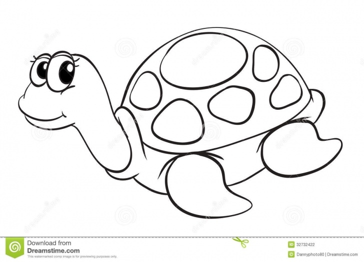 Learning Tortoise Pencil Drawing Ideas Tortoise Drawing For Kids And A Tortoise Sketch Stock Vector Pictures